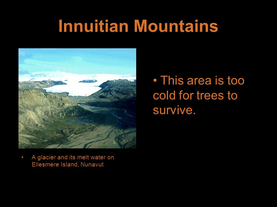 Innuitian Mountains This area is too cold for trees to survive.