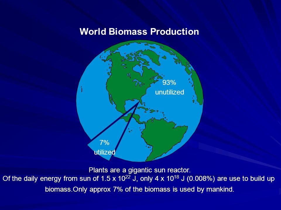 World Biomass Production