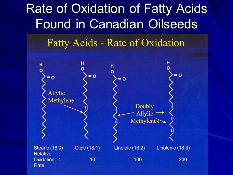 Rate of Oxidation of Fatty Acids Found in Canadian Oilseeds