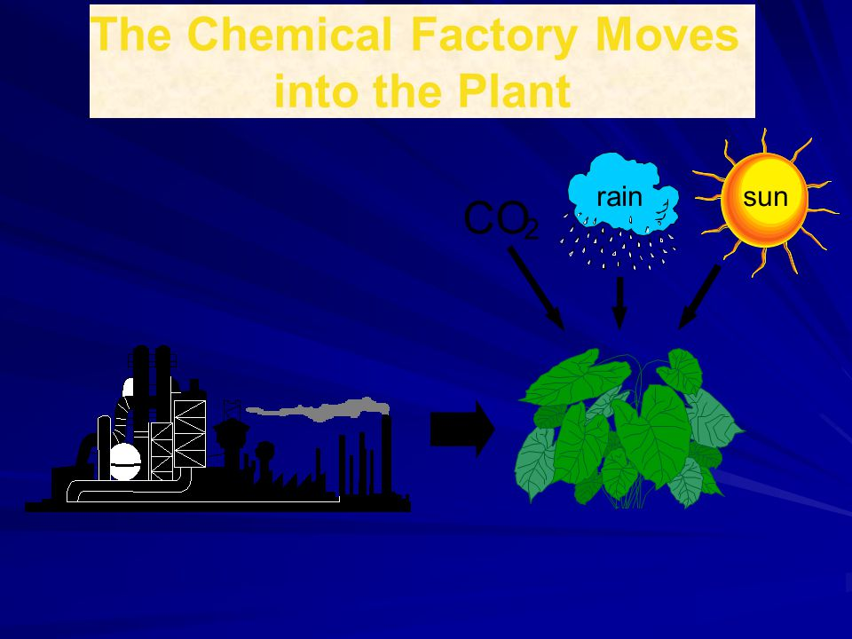 The Chemical Factory Moves