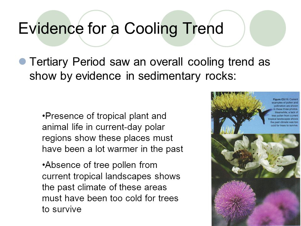 Evidence for a Cooling Trend