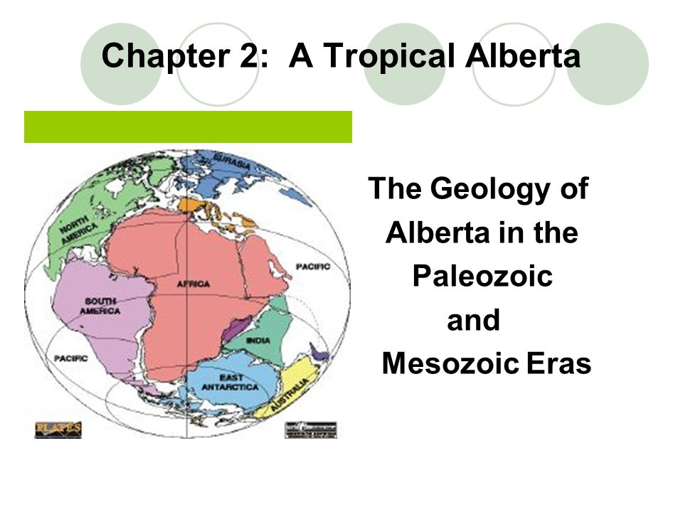 Chapter 2: A Tropical Alberta