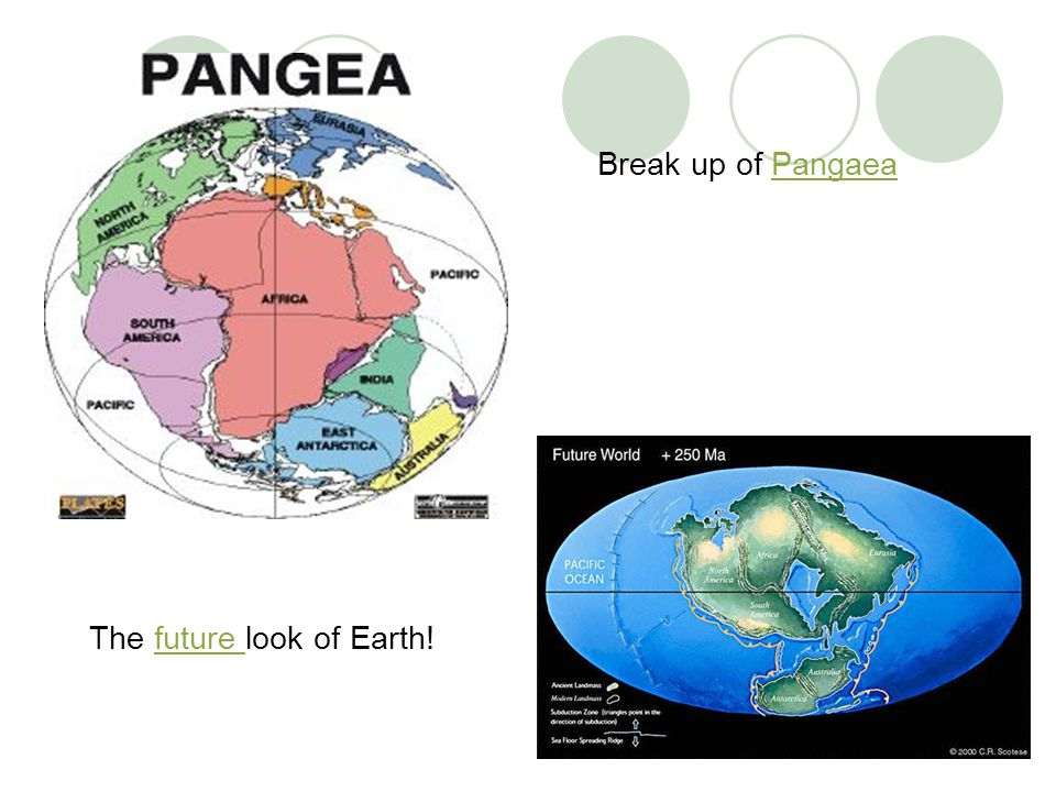 Break up of Pangaea The future look of Earth!
