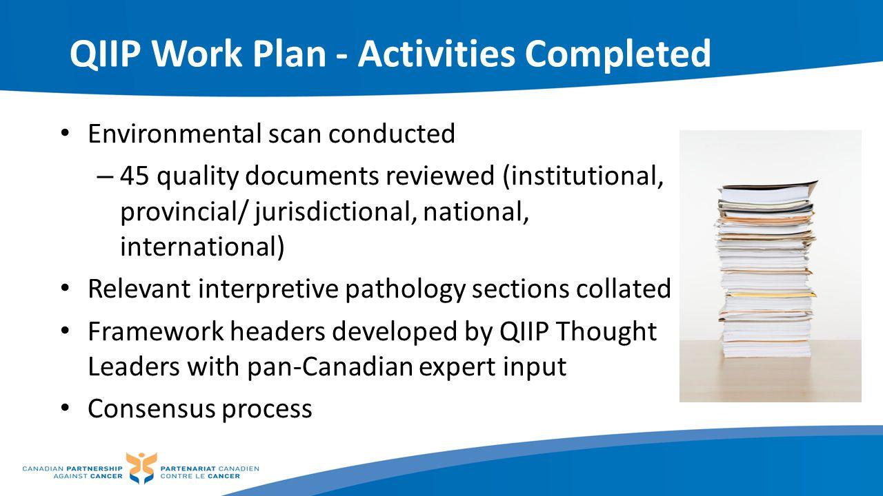 QIIP Work Plan - Activities Completed