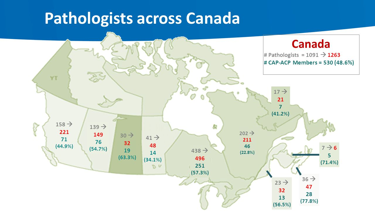 Pathologists across Canada
