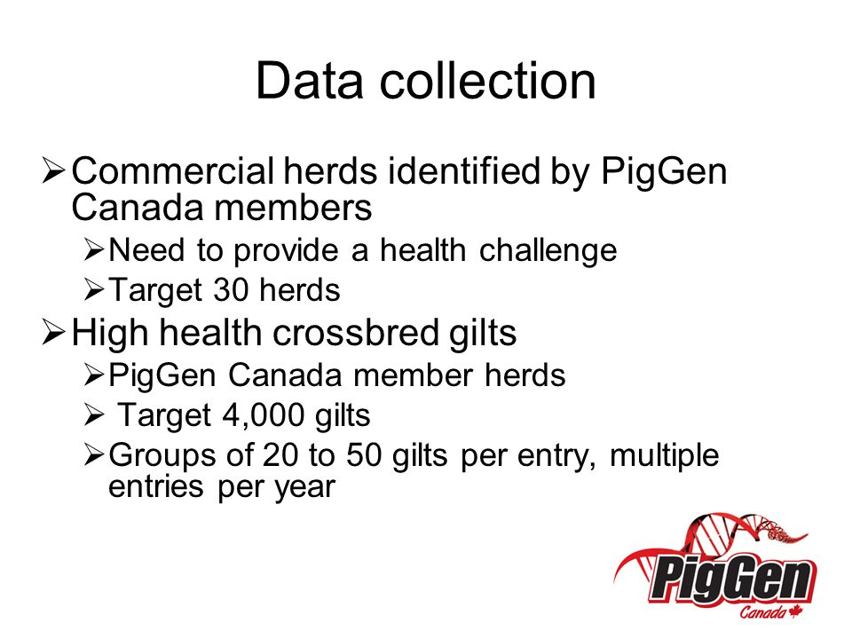 Data collection Commercial herds identified by PigGen Canada members