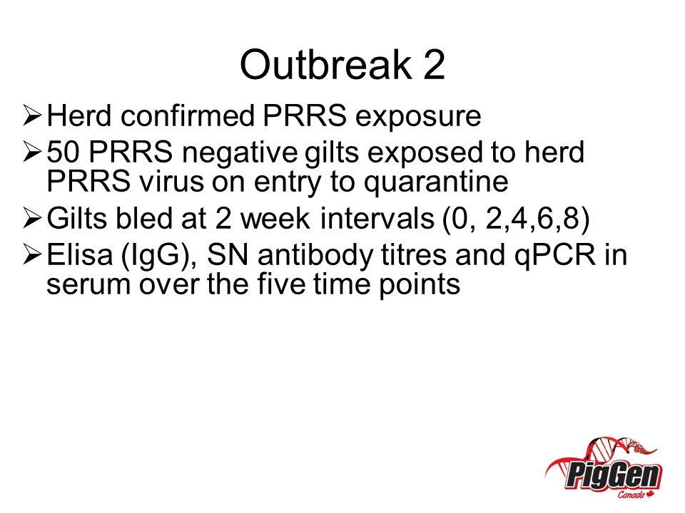 Outbreak 2 Herd confirmed PRRS exposure