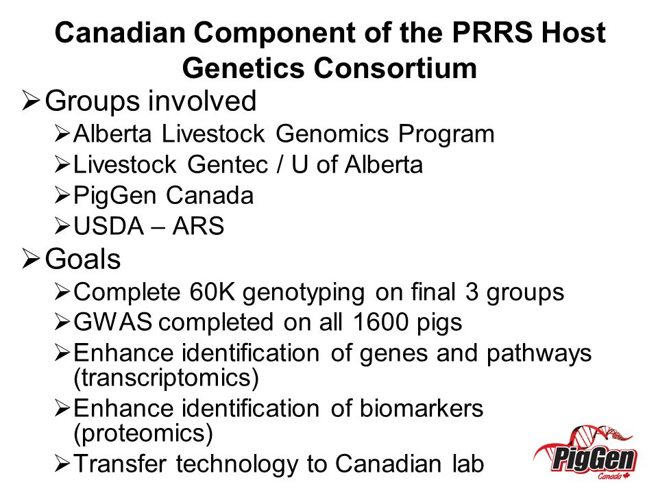 Canadian Component of the PRRS Host Genetics Consortium