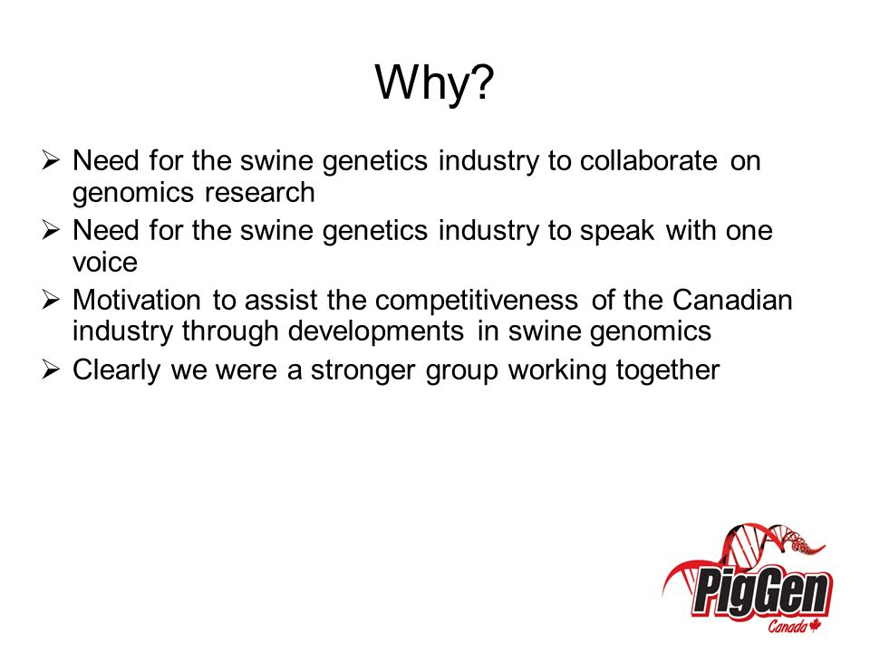Why Need for the swine genetics industry to collaborate on genomics research. Need for the swine genetics industry to speak with one voice.