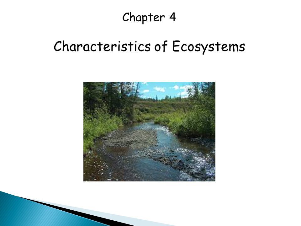 Characteristics of Ecosystems