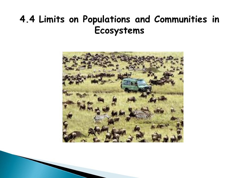 4.4 Limits on Populations and Communities in Ecosystems