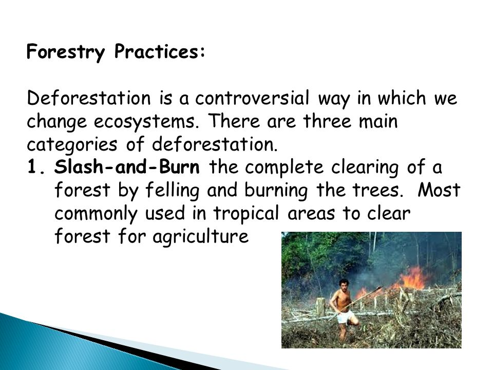 Forestry Practices: Deforestation is a controversial way in which we change ecosystems. There are three main categories of deforestation.