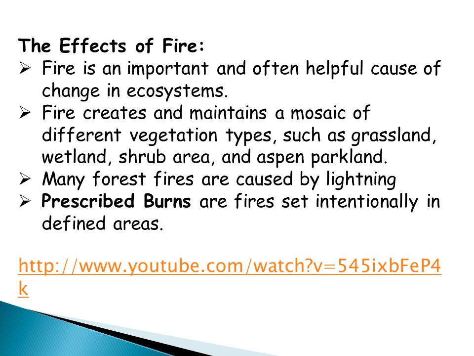 The Effects of Fire: Fire is an important and often helpful cause of change in ecosystems.