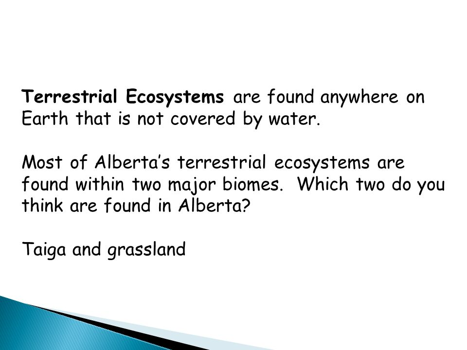 Terrestrial Ecosystems are found anywhere on Earth that is not covered by water.