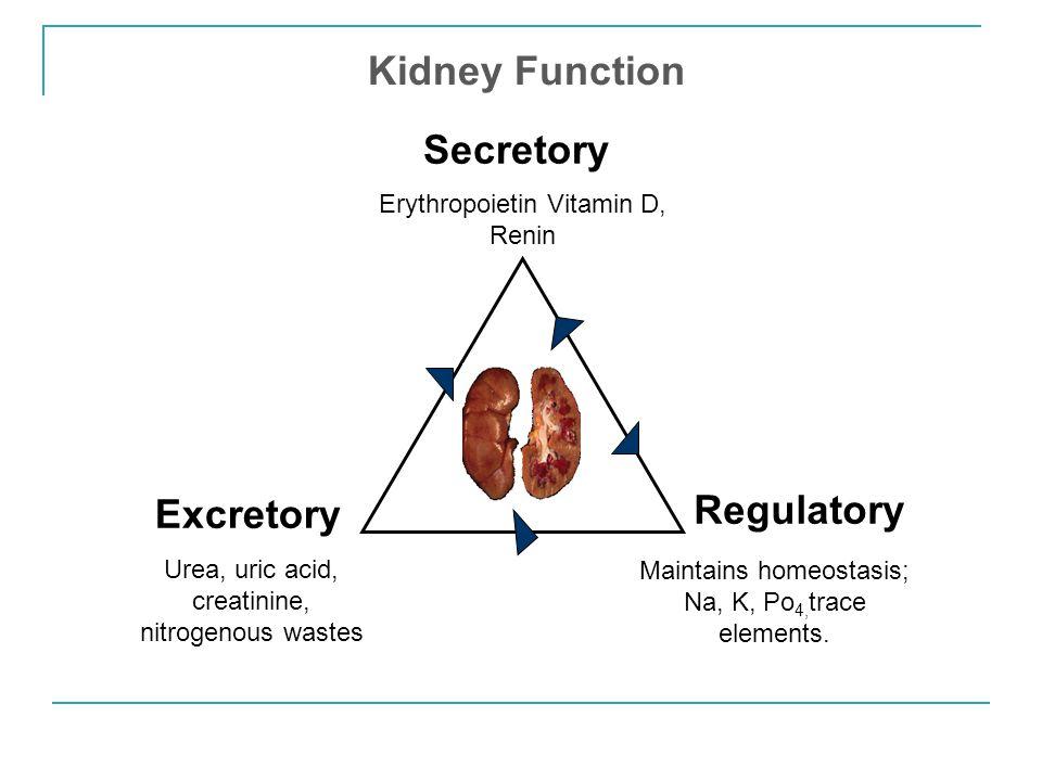 Secretory Excretory Regulatory