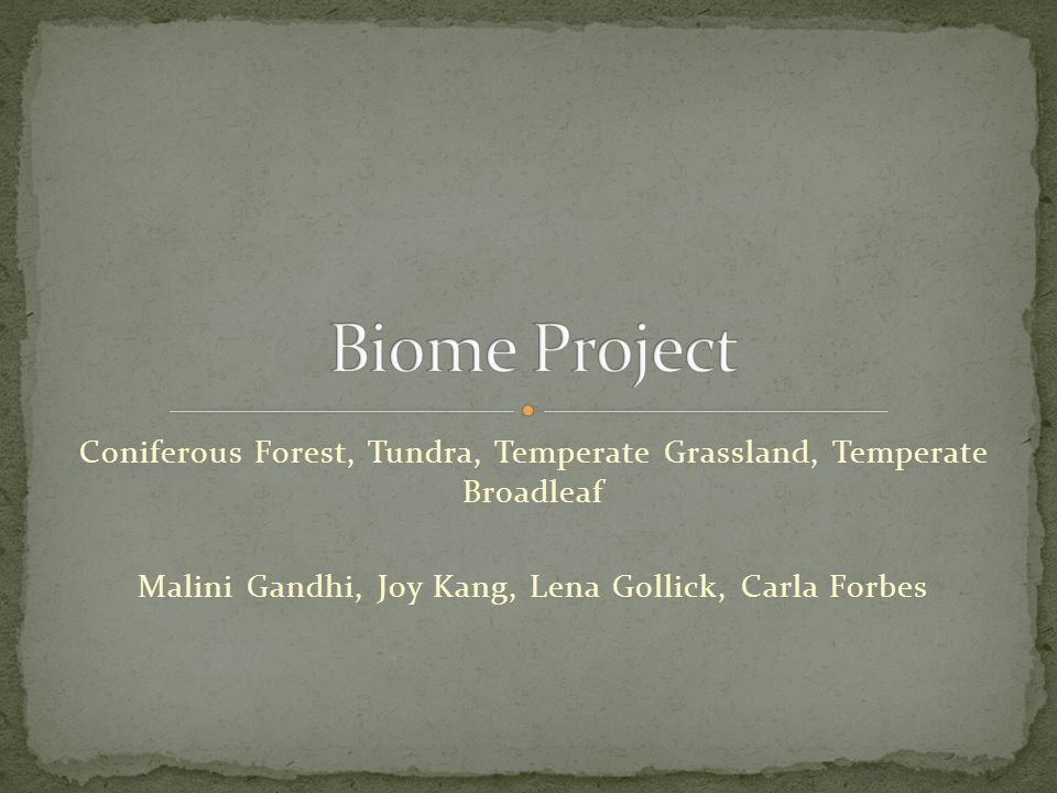 Biome Project Coniferous Forest, Tundra, Temperate Grassland, Temperate Broadleaf.