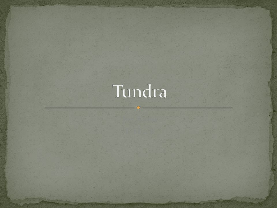 Tundra Joy Kang E block