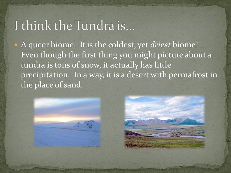 I think the Tundra is…
