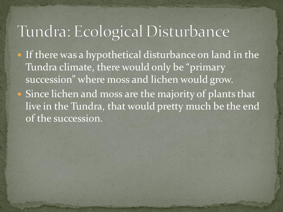 Tundra: Ecological Disturbance