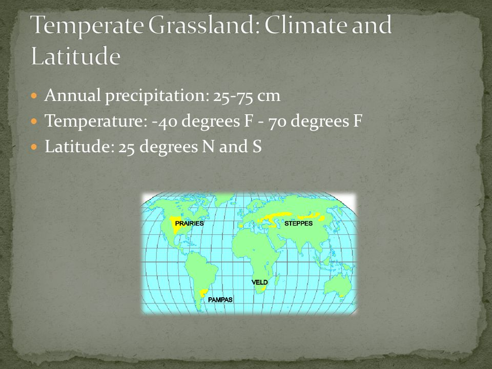 Temperate Grassland: Climate and Latitude