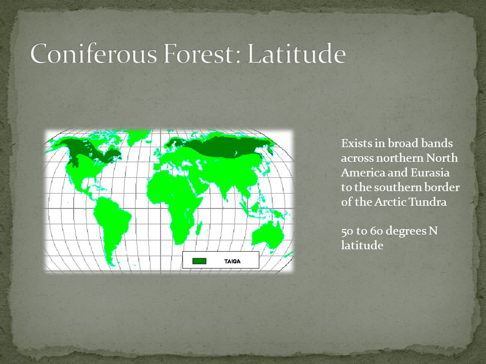 Coniferous Forest: Latitude