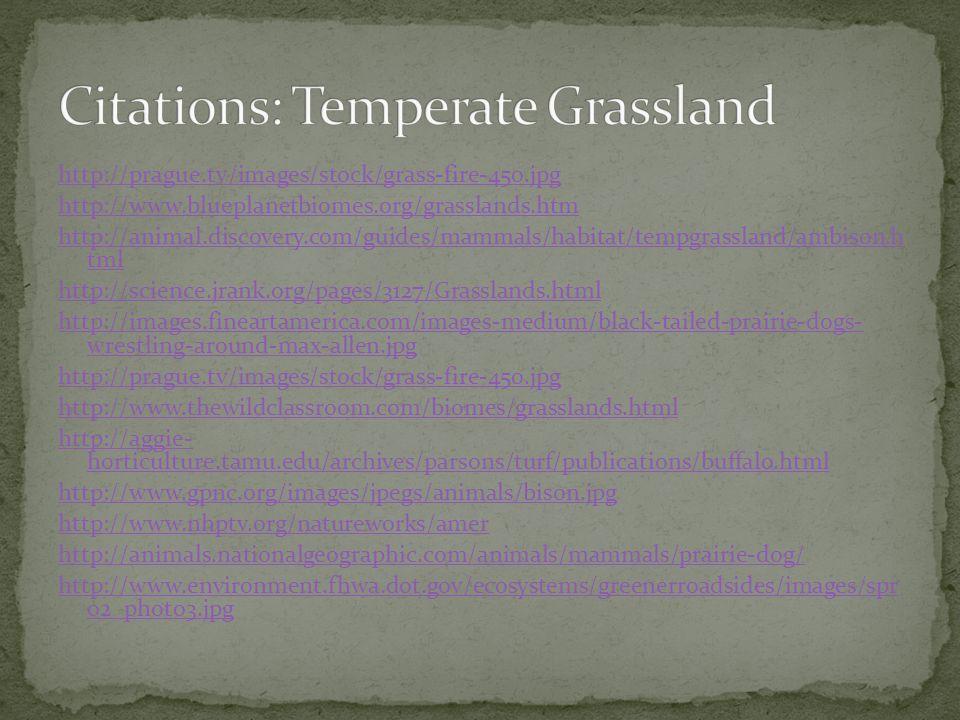 Citations: Temperate Grassland