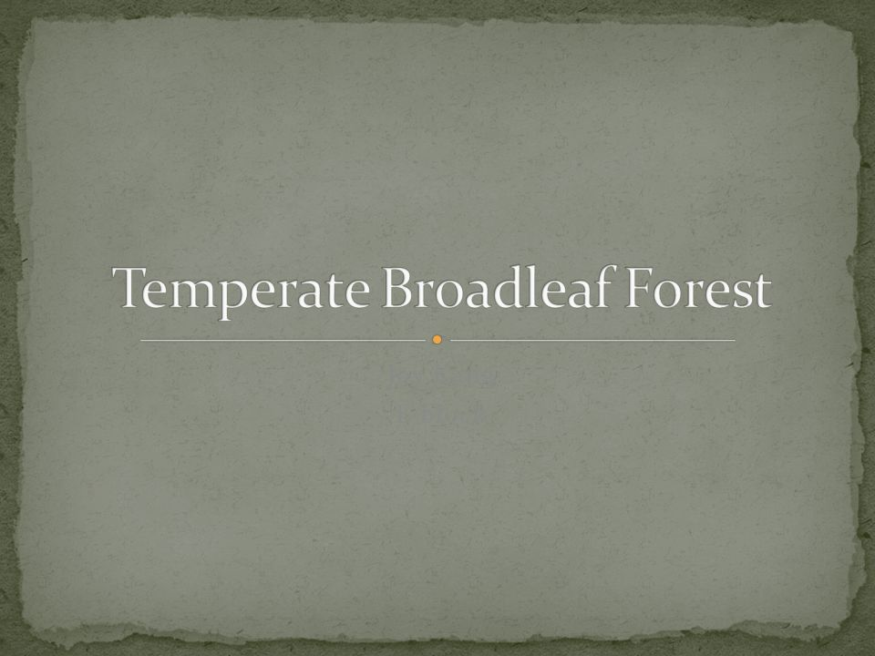 Temperate Broadleaf Forest