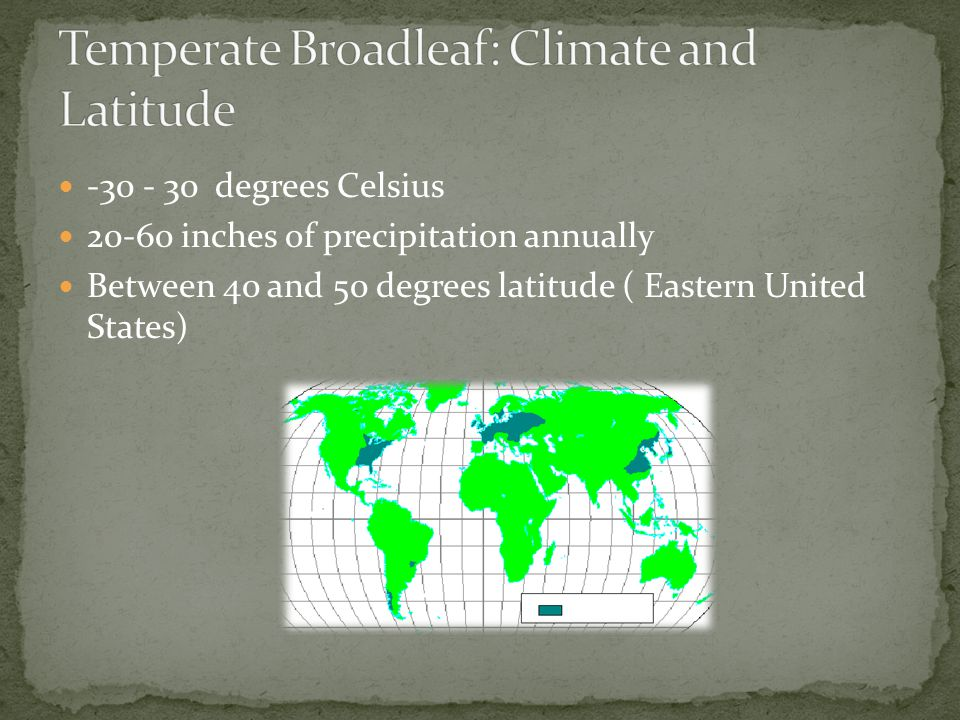Temperate Broadleaf: Climate and Latitude