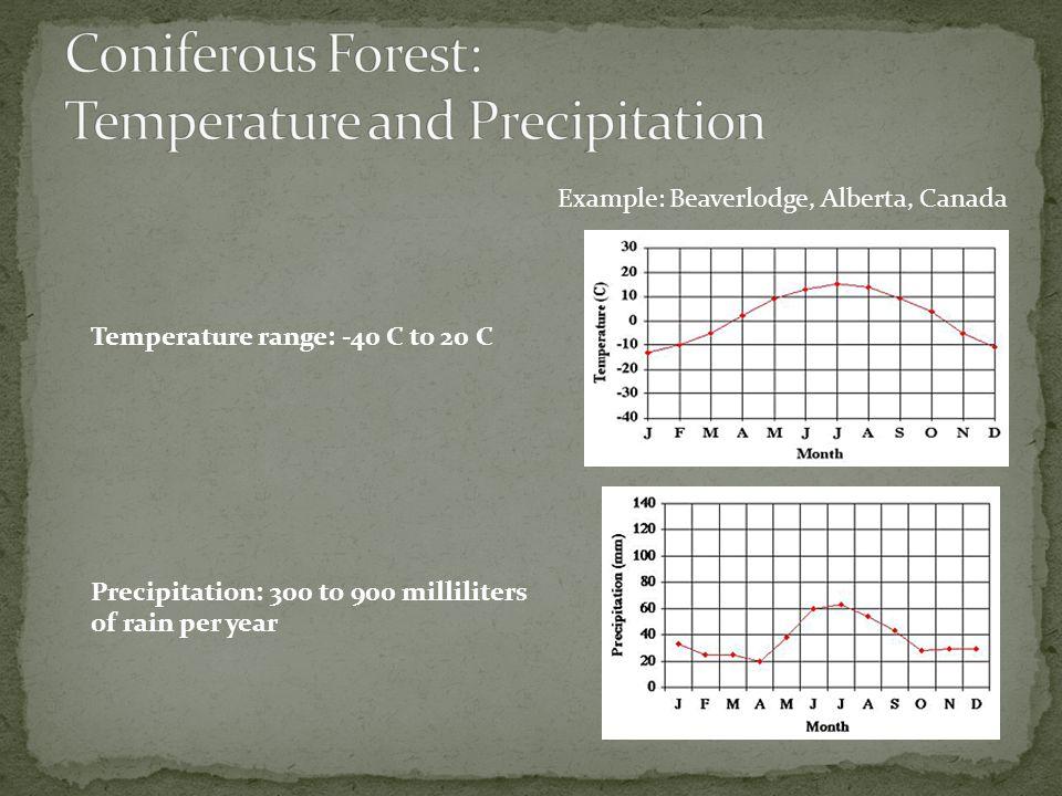 Coniferous Forest: Temperature and Precipitation