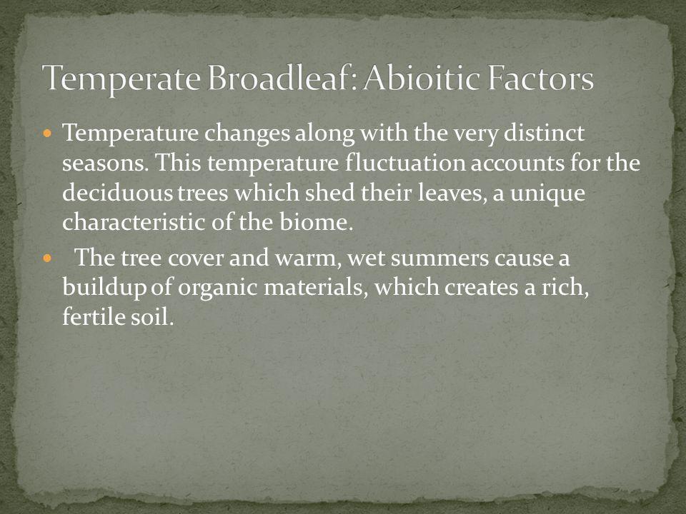 Temperate Broadleaf: Abioitic Factors