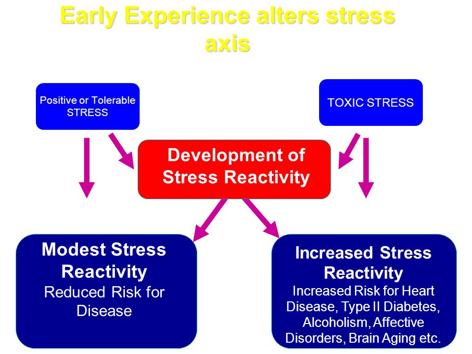 Early Experience alters stress axis