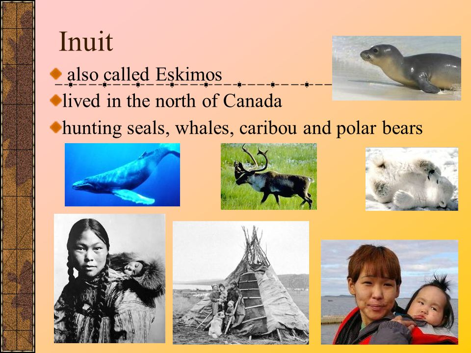 Inuit also called Eskimos lived in the north of Canada
