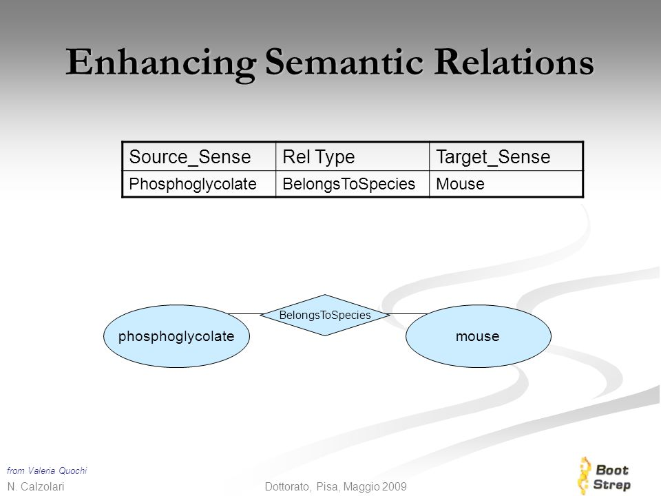 Enhancing Semantic Relations