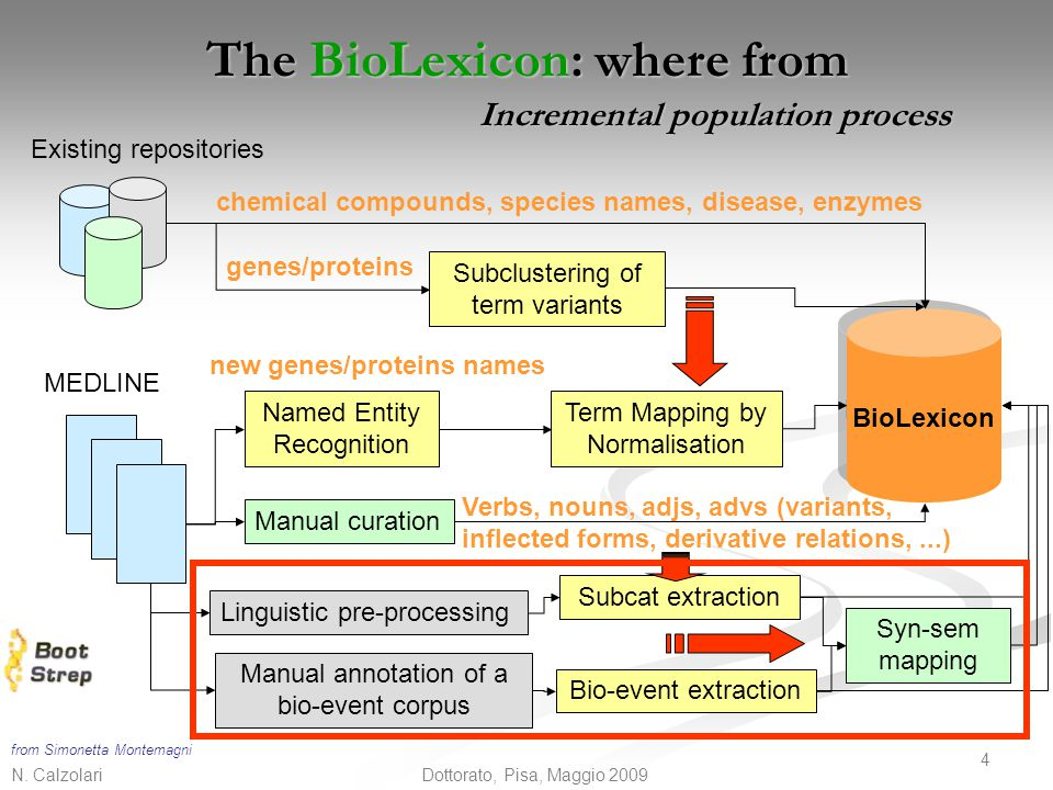 The BioLexicon: where from