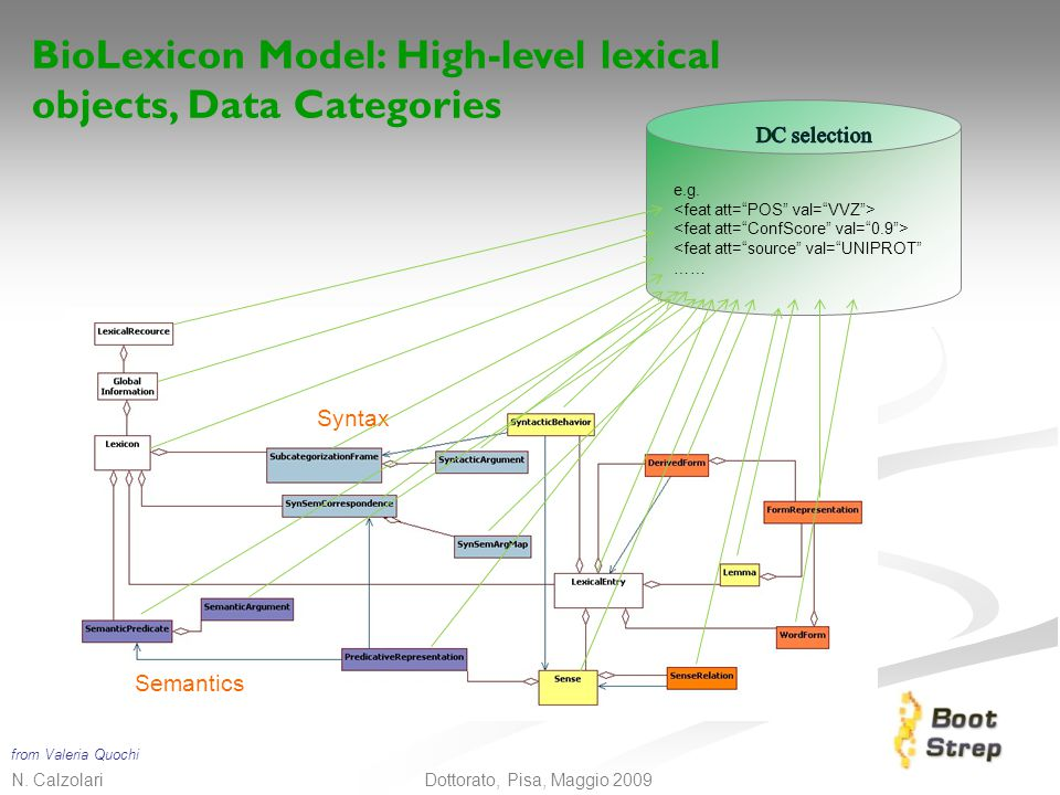 BioLexicon Model: High-level lexical objects, Data Categories