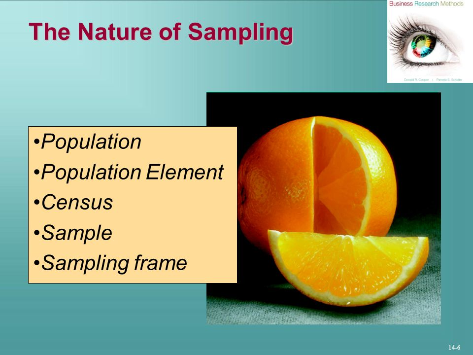 The Nature of Sampling Population Population Element Census Sample