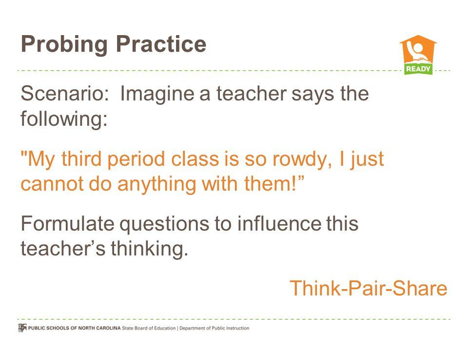 Probing Practice