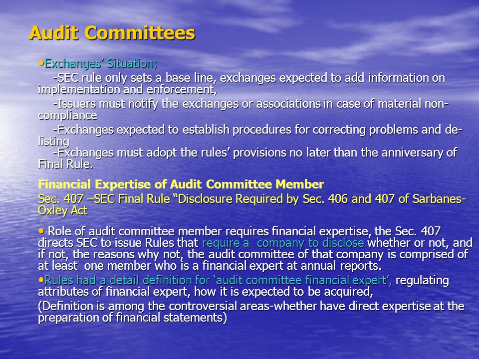 Audit Committees Exchanges' Situation;