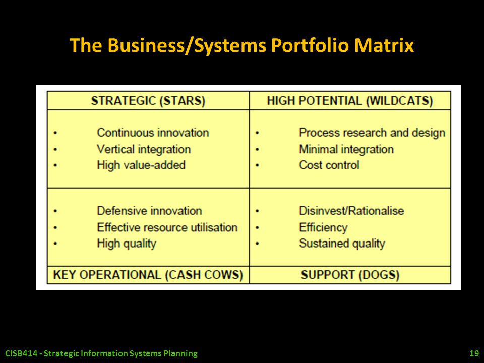 The Business/Systems Portfolio Matrix