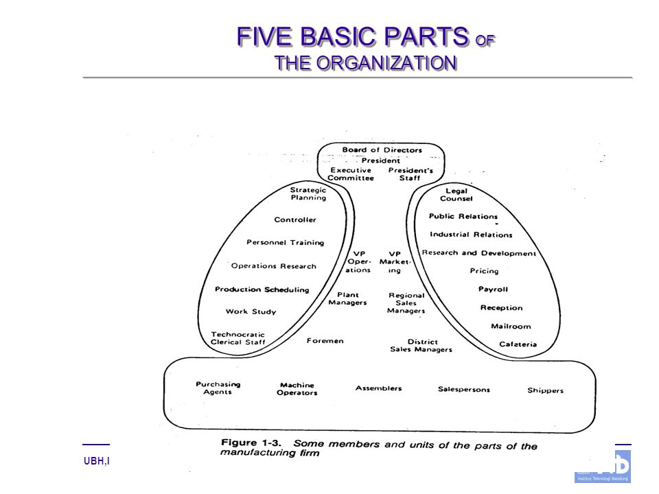 FIVE BASIC PARTS OF THE ORGANIZATION