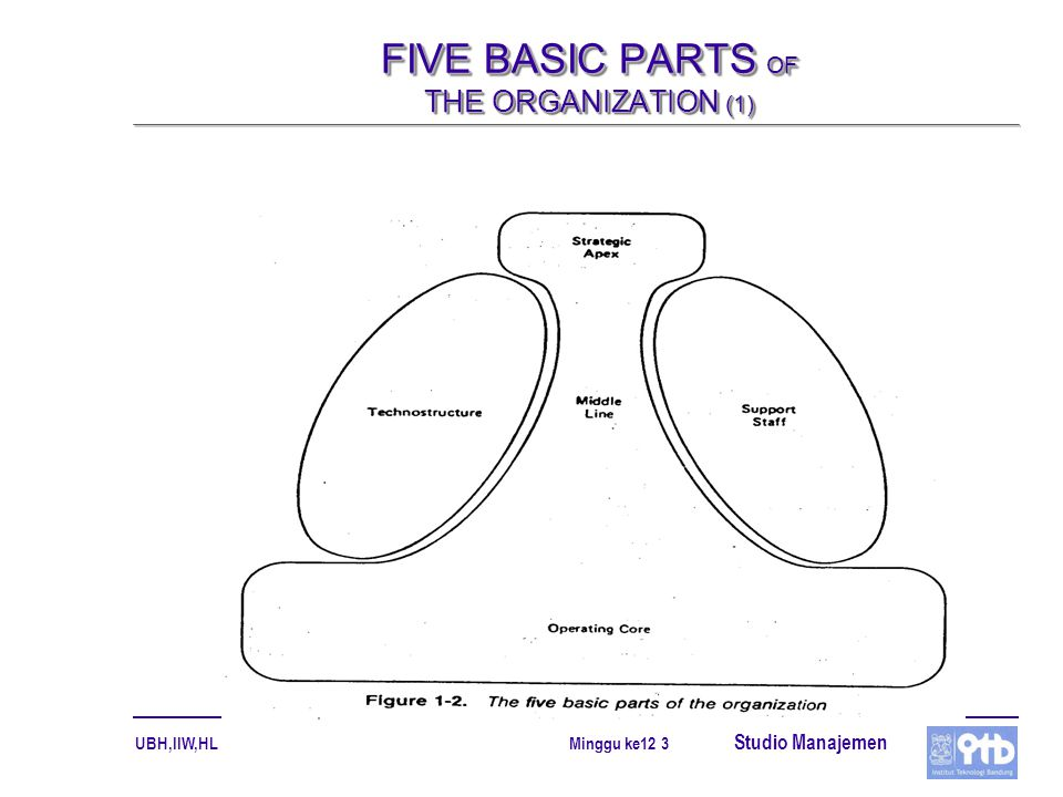 FIVE BASIC PARTS OF THE ORGANIZATION (1)