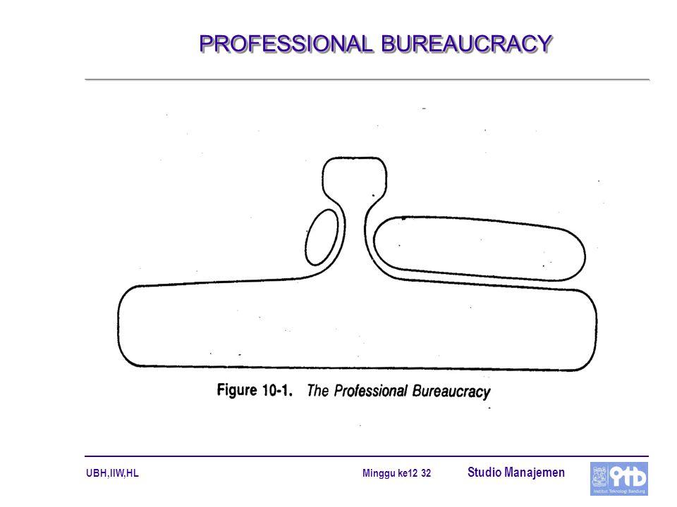 PROFESSIONAL BUREAUCRACY