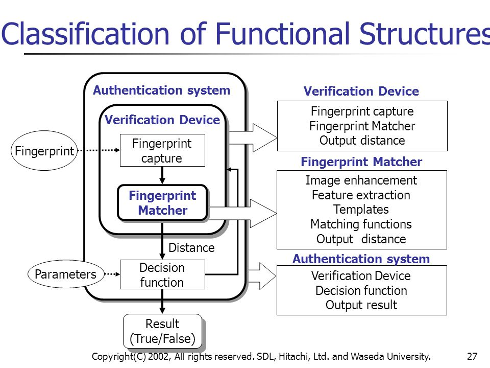 Classification of Functional Structures