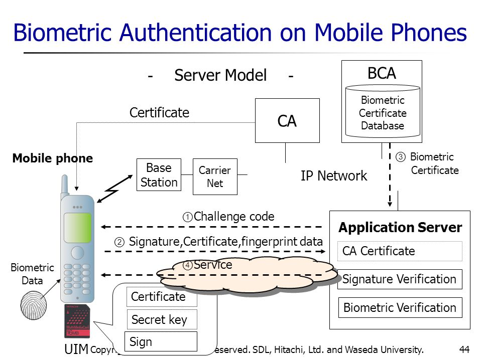 Biometric Authentication on Mobile Phones