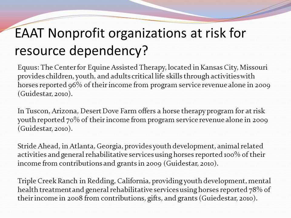 EAAT Nonprofit organizations at risk for resource dependency