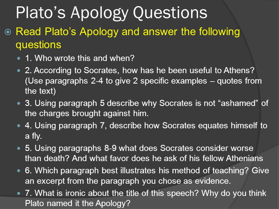 appology essay