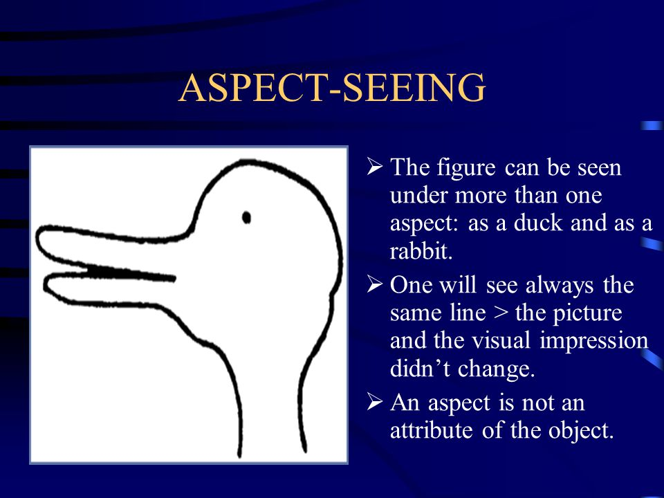 ASPECT-SEEING The figure can be seen under more than one aspect: as a duck and as a rabbit.