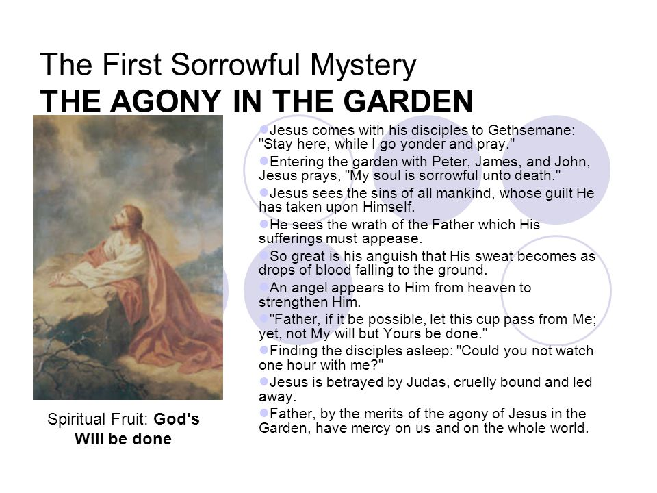 The First Sorrowful Mystery THE AGONY IN THE GARDEN
