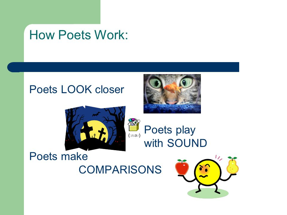 How Poets Work: Poets LOOK closer Poets play with SOUND Poets make
