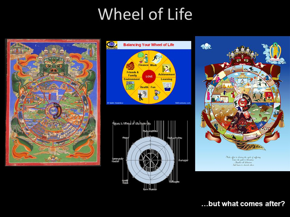 Wheel of Life …but what comes after